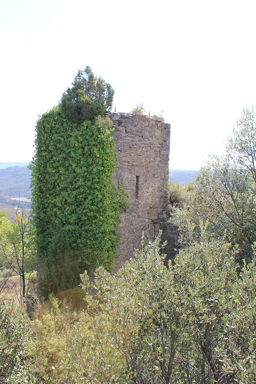 800px-Castell_de_Clariana_-_Torre (1).jpg